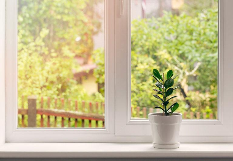 картинка окна летние киров